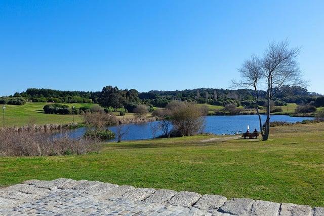 Parques no Porto