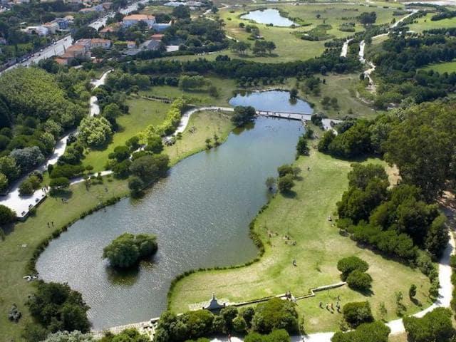 Parque da Cidade no Porto
