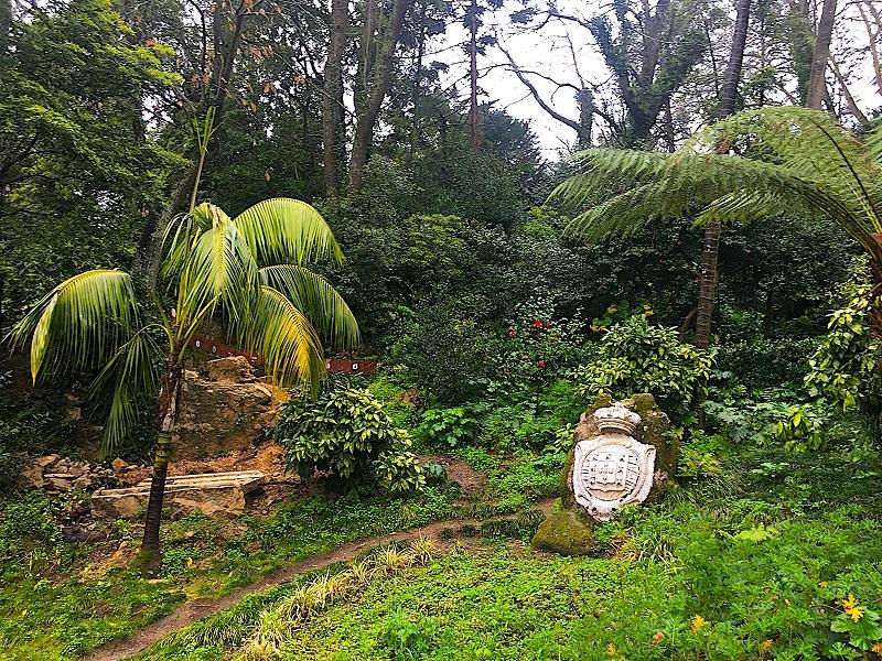 Plantas no Parque da Liberdade em Sintra