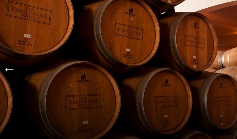 Barris da vinícola Casa Ermelinda Freitas em Setúbal