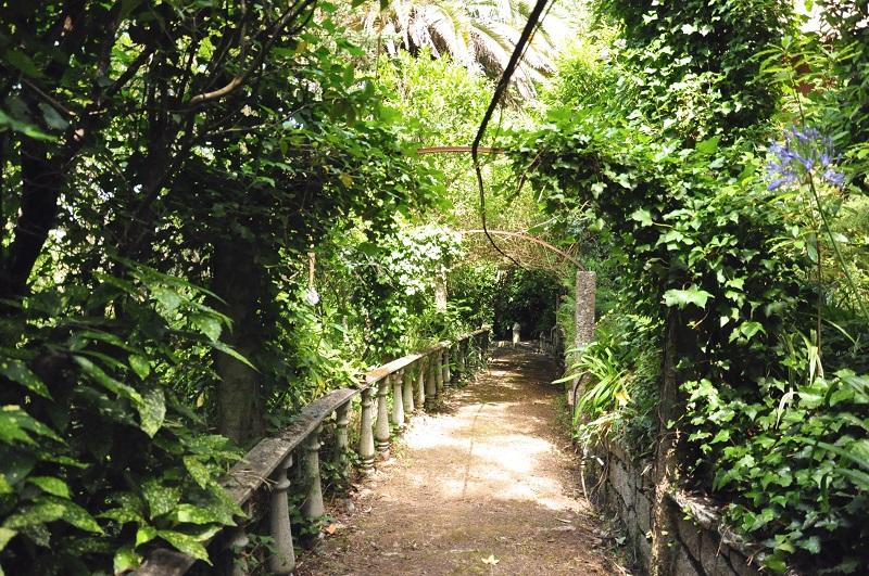 Percurso para Vila Salssetti em Sintra