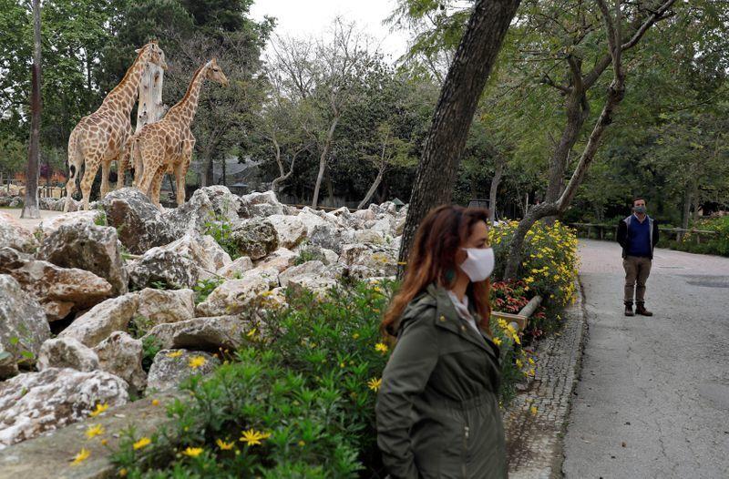 Zardim Zoológico de Lisboa pós coronavírus