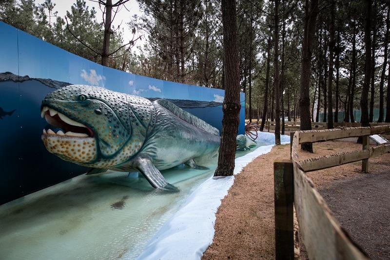 Animais Marinhos no Museu dos dinossauros Dino Parque em Portugal